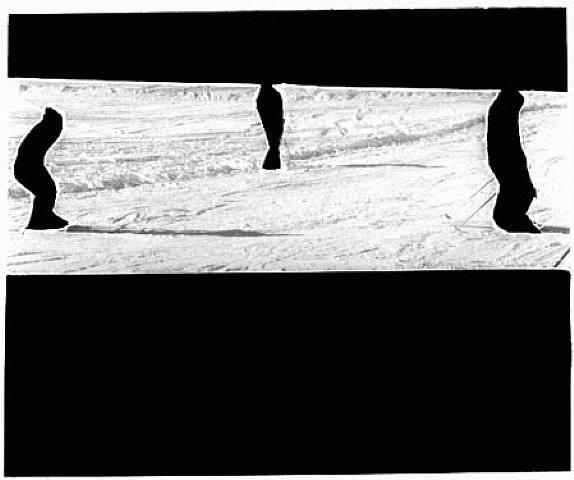 artwork_images_115003_291542_geraldode-barros