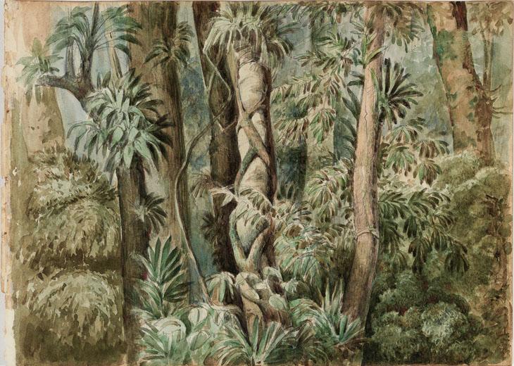 IMS-RJ promove palestra sobre novas perspectivas para a pintura brasileira  do século XIX