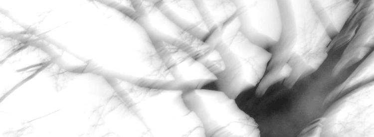 #05 divulga_greice_rosa