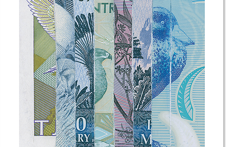 Dinheiro triturado é a matéria prima para obra de artista plástico argentino