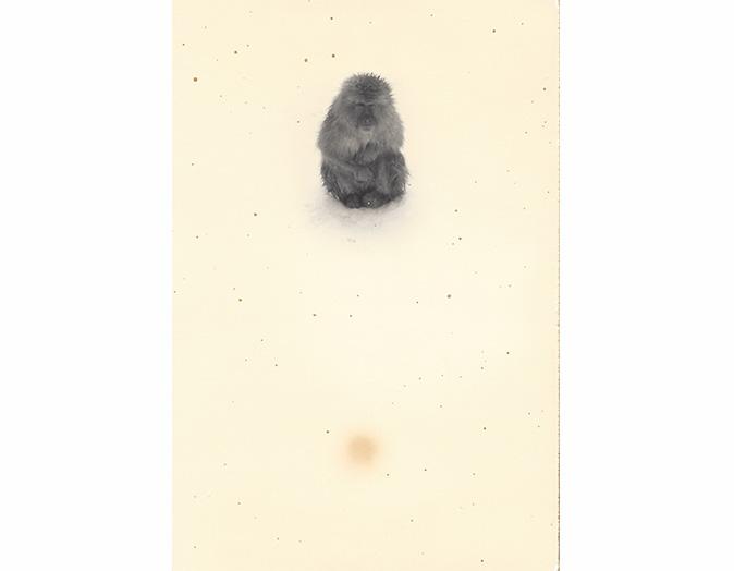 Masao Yamamoto - Nakazora 1254 - ano 2006 - fotografia gelatina e prata e tecnica mista