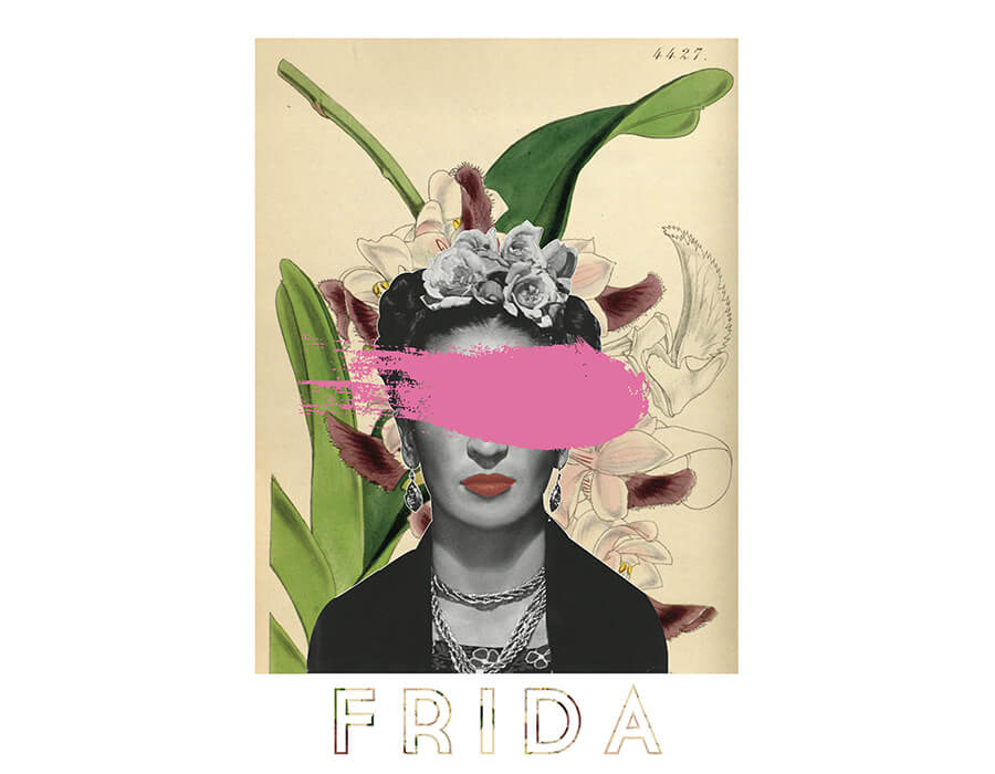 A Rosa Frida - Gustavo Mateus