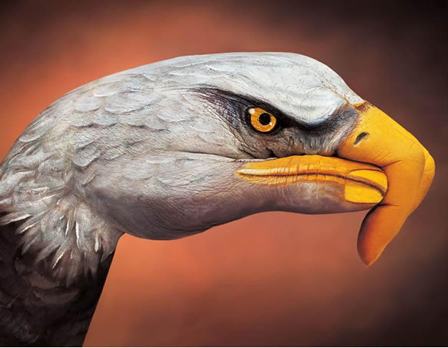 e-incrivel-como-a-arte-pode-ser-fascinante-incrivel-esse-gaviao-feito-com-pintura-corporal