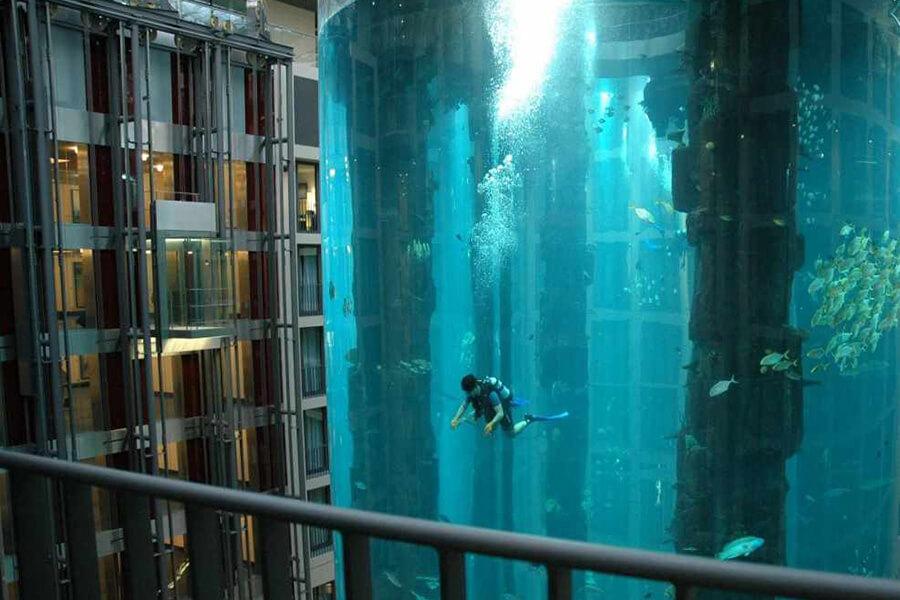 06-maior-aquario-do-mundo-900x600