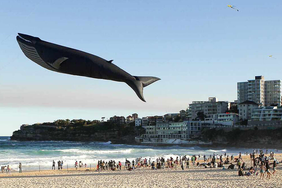 12-balao-flutuante-de-baleia