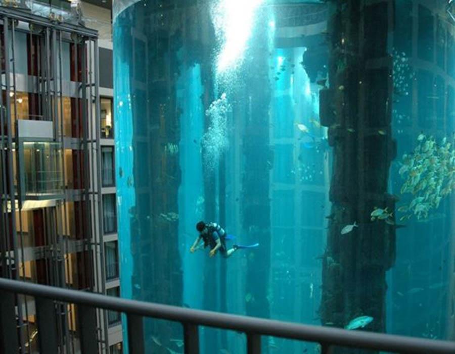 este-aquario-gigante-e-parte-do-poco-do-elevador-do-predio-onde-ele-esta-localizado-nele-vivem-mais-de-1500-peixes