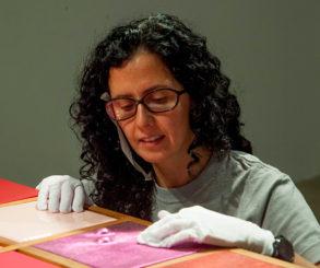 Ana Maria Tavares: espaços em reflexos de formas
