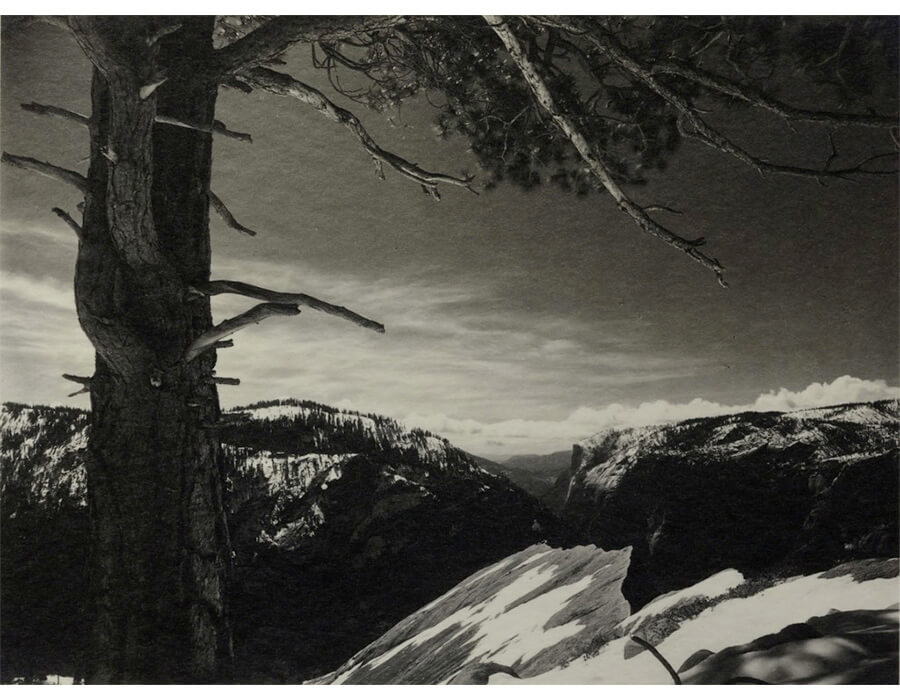 On the Heights, Yosemite National Park, CA, 1927