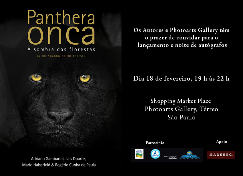 Panthera_onca_convite (002)