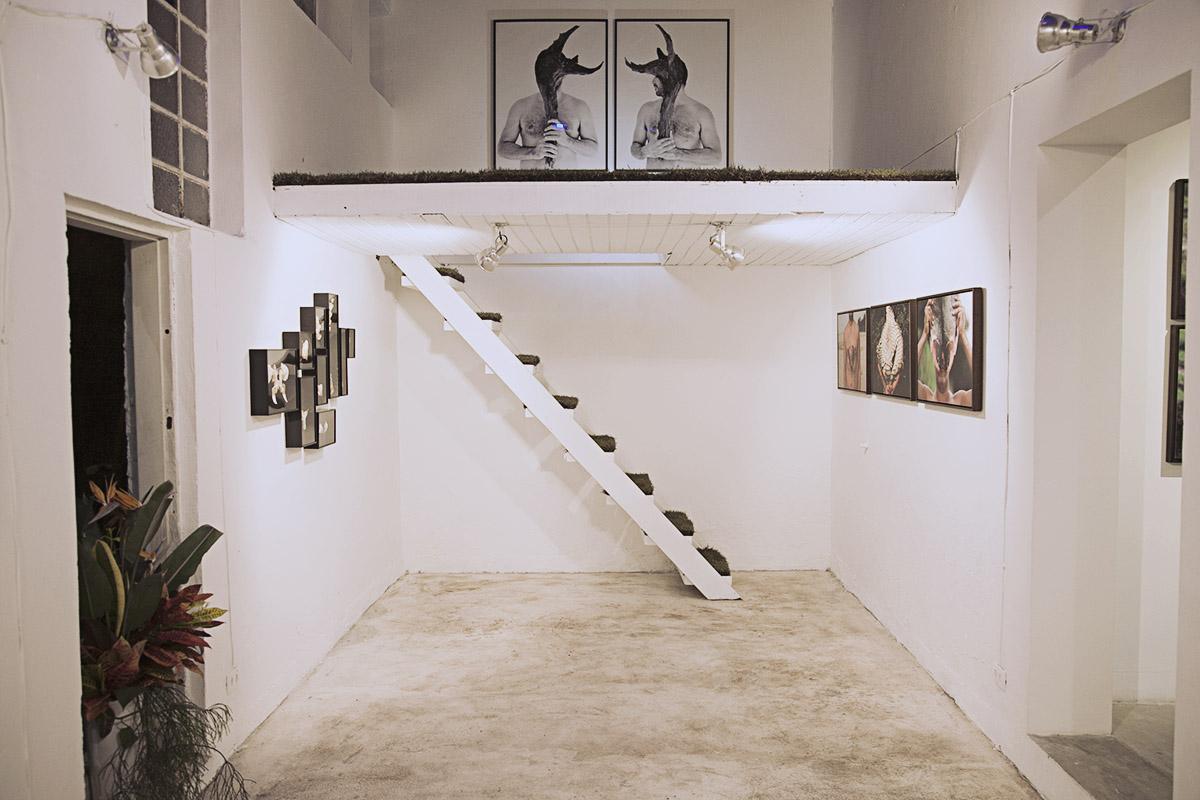 Espaço da Galeria VilaNova.3