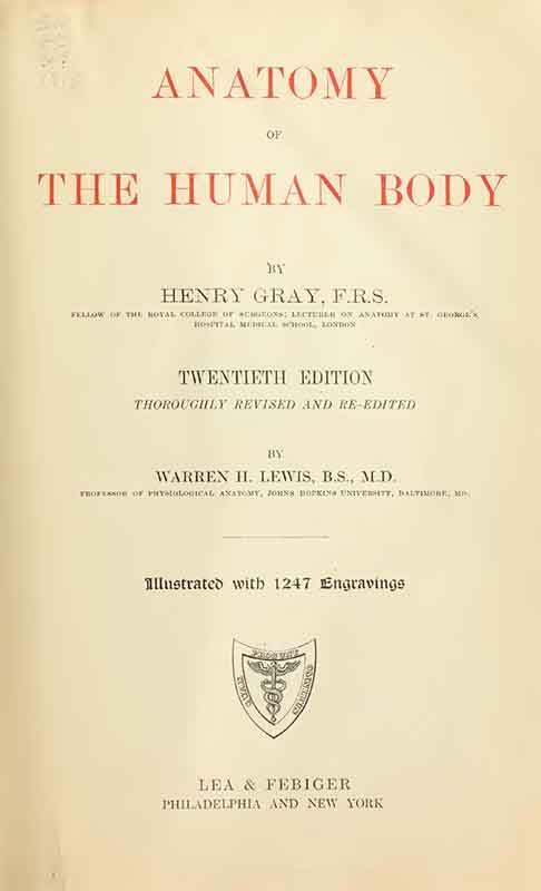 Gray's_Anatomy