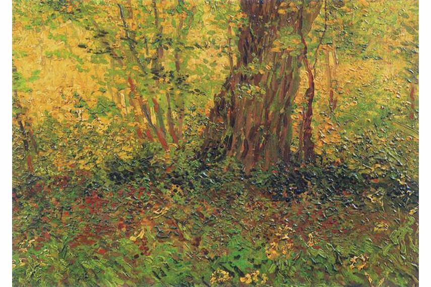 Vincent van Gogh – Undergrowth, 1887