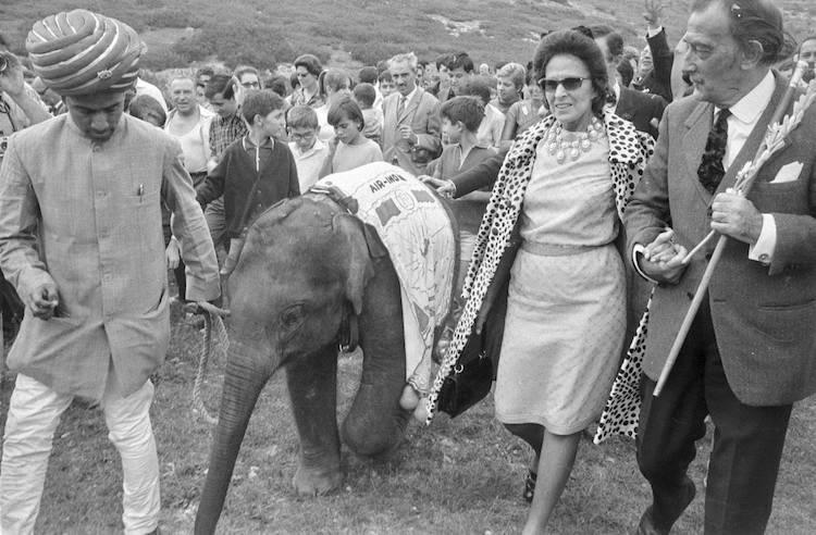 Dalí. Elefante