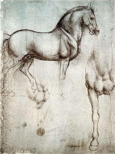 Estudos sobre o cavalo de da Vinci