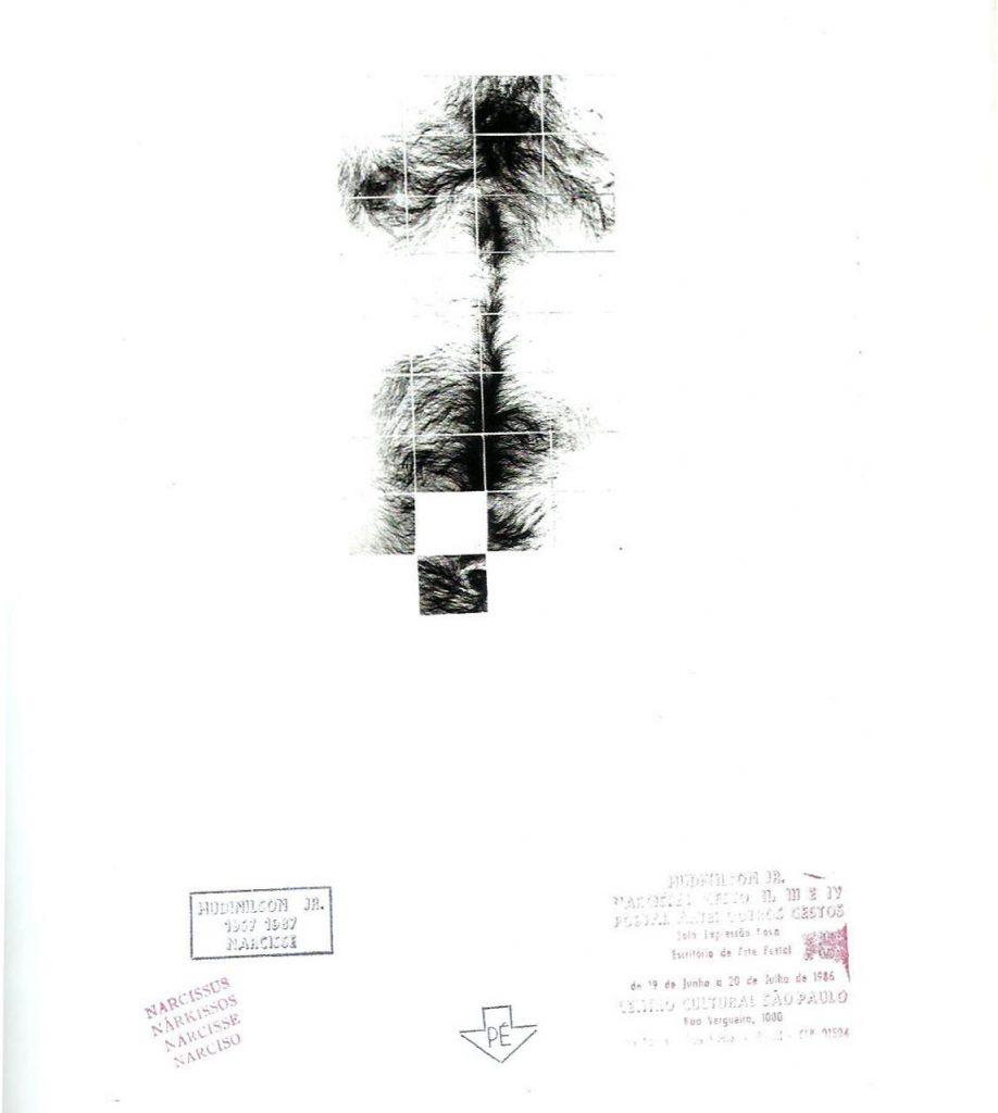 Serie Narcisse, 1987