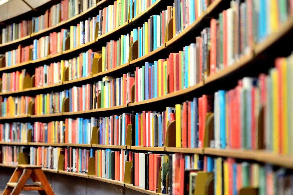 estante de livros arredondada