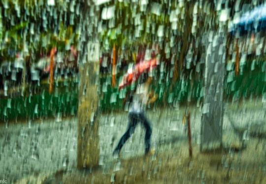 Chove Há Silêncio I