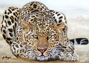 Onça-pintada - Josie Mengai