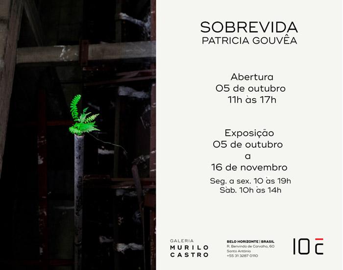 Exposições outubro/2019 em Minas Gerais e Rio de Janeiro; Patrícia Gouvêa | Sobrevida