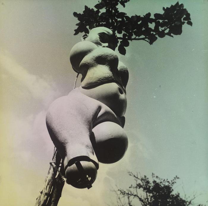 Hans Bellmer - The Doll (1936) | Tate Modern